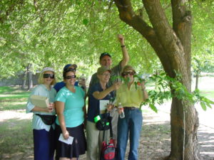 first-cf-project-tree-id-in-pecan-grove-park-rowlett-8-24-08